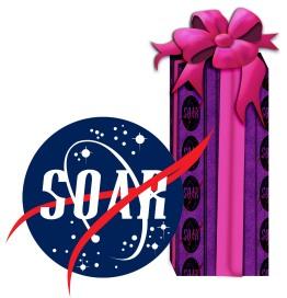 jets-christmas-purple-present